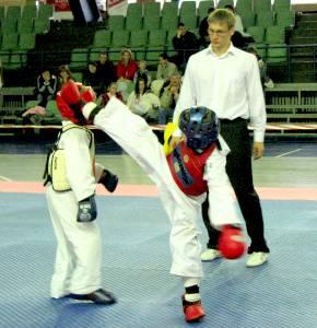Спорт: В Житомир приедет знаменитый мастер теквондо Ханг-Чоля